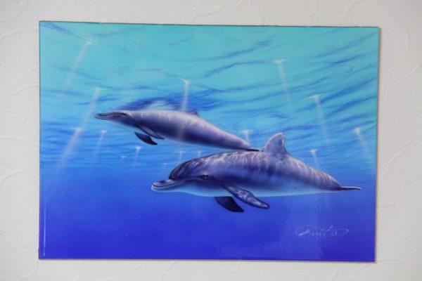 エアブラシ イルカの絵