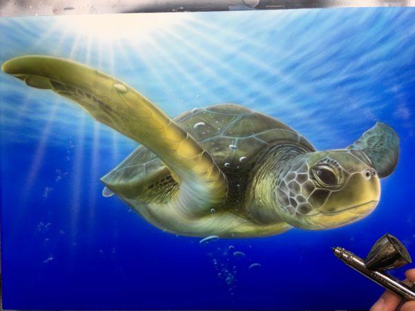 エアブラシ ウミガメ